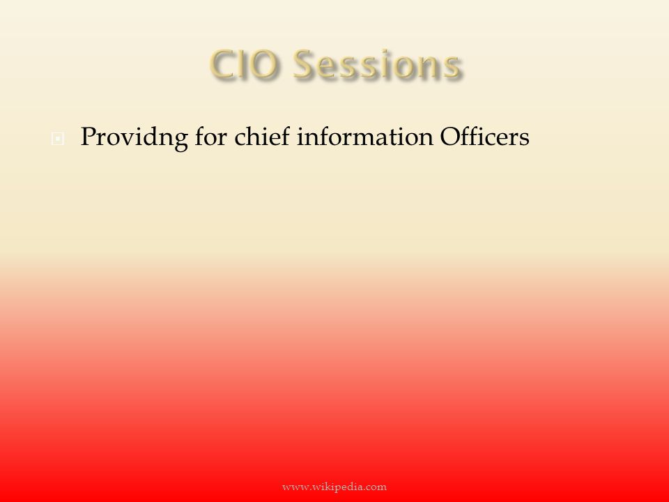  Providng for chief information Officers