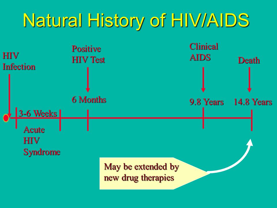 Natural History of HIV/AIDS HIVInfection 3-6 Weeks AcuteHIVSyndrome 6 Months Positive HIV Test 9.8 Years 14.8 Years ClinicalAIDS Death May be extended by new drug therapies