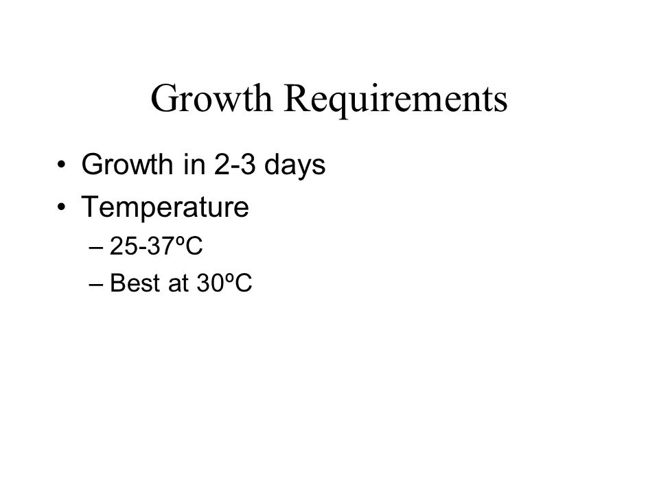 Growth Requirements Growth in 2-3 days Temperature –25-37ºC –Best at 30ºC