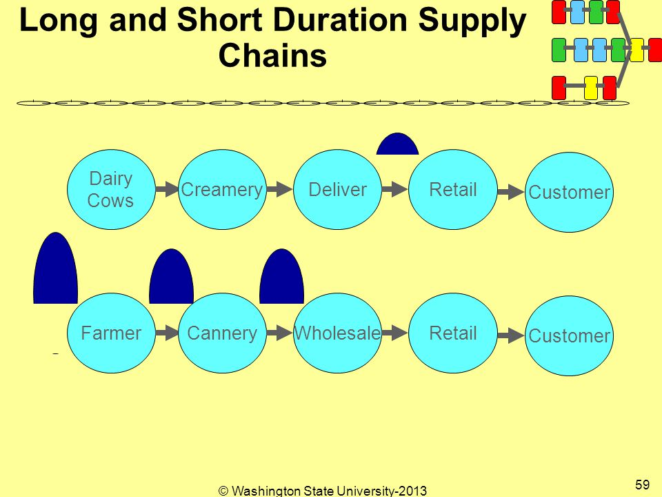 © Washington State University Long and Short Duration Supply Chains Dairy Cows CreameryDeliverRetail Customer FarmerCanneryWholesaleRetail Customer