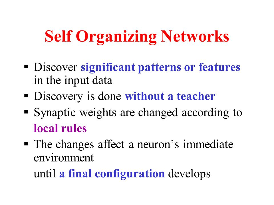 Self Organization  Network Organization is fundamental to the brain  Functional structure  Layered structure  Both parallel processing and serial processing require organization of the brain