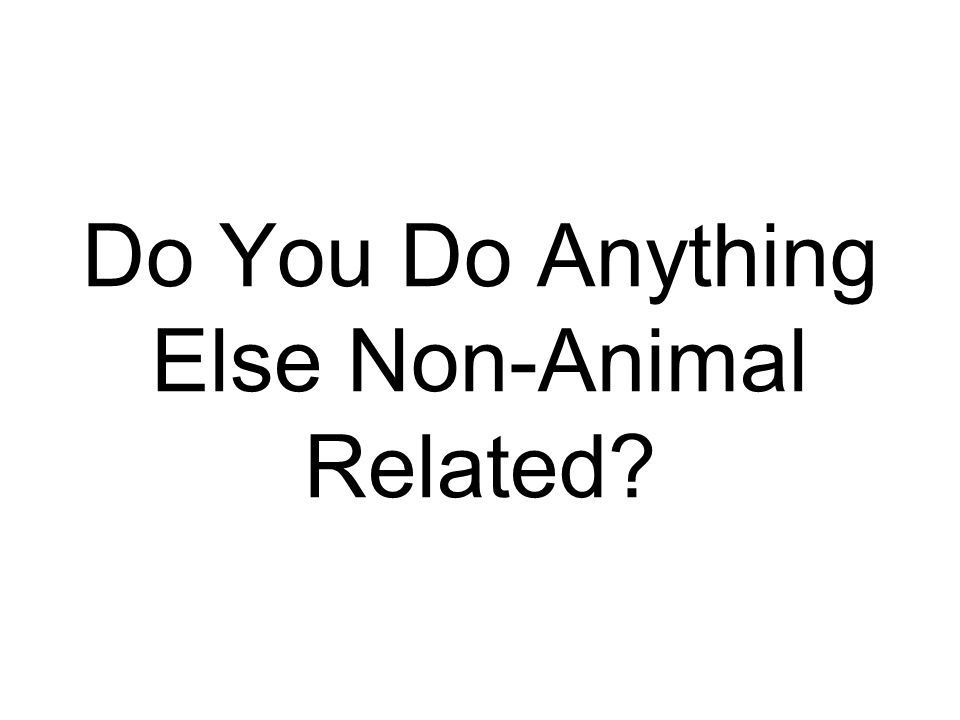 Do You Do Anything Else Non-Animal Related