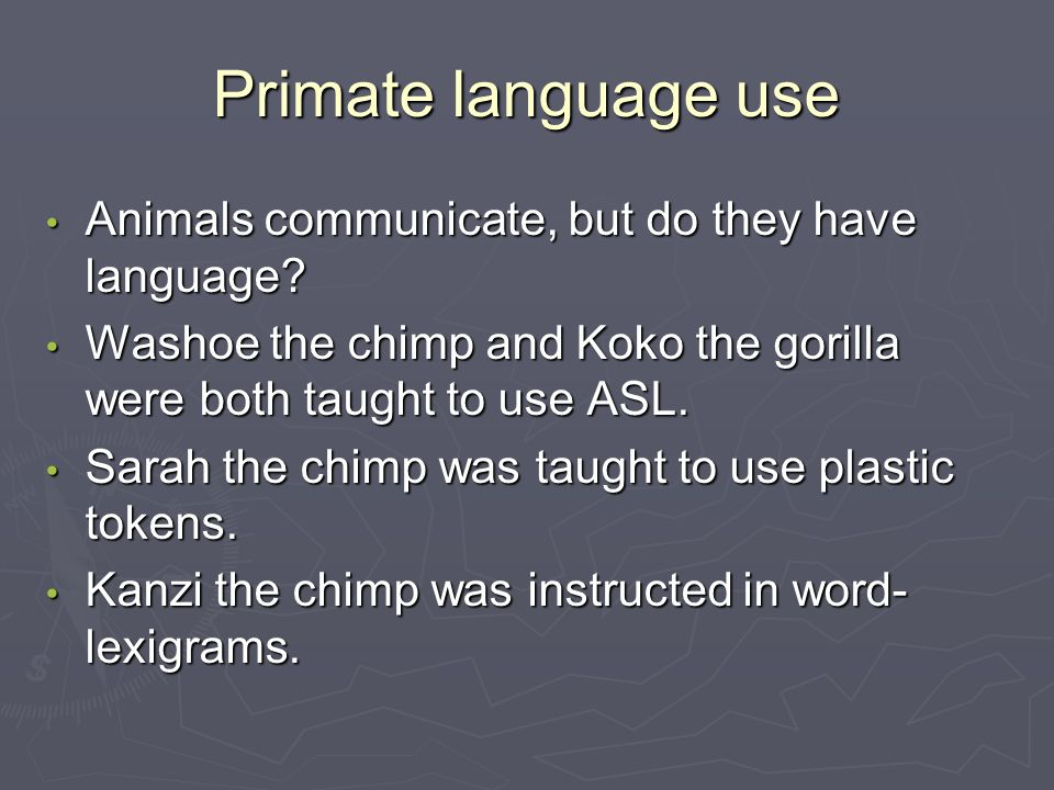 Primate language use Animals communicate, but do they have language.