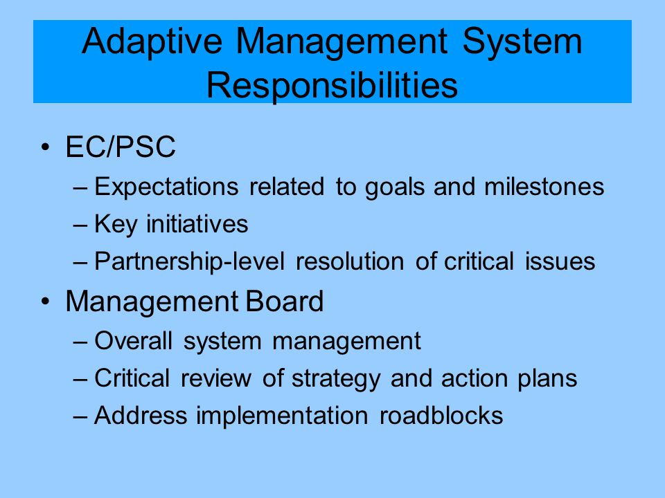 Adaptive Management System Responsibilities EC/PSC –Expectations related to goals and milestones –Key initiatives –Partnership-level resolution of critical issues Management Board –Overall system management –Critical review of strategy and action plans –Address implementation roadblocks