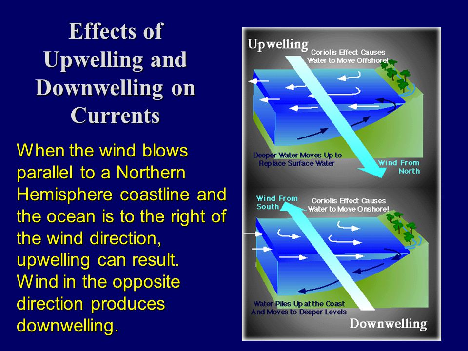 Effects of Upwelling and Downwelling on Currents When the wind blows parallel to a Northern Hemisphere coastline and the ocean is to the right of the wind direction, upwelling can result.