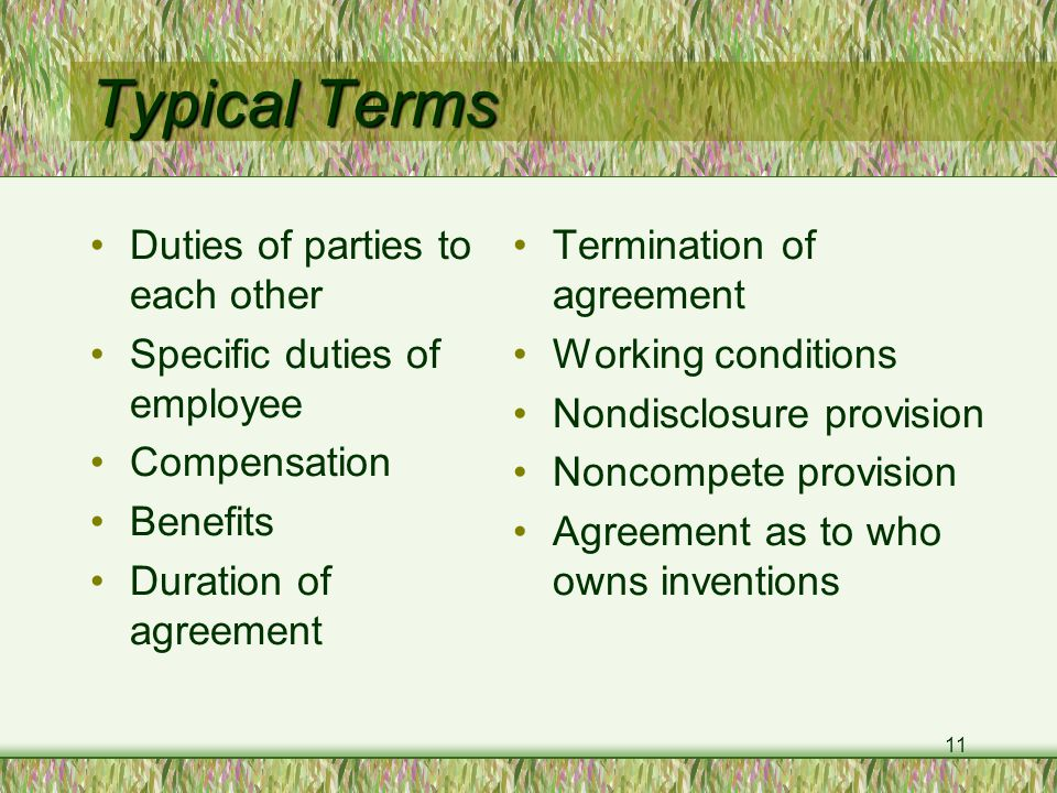 11 Typical Terms Duties of parties to each other Specific duties of employee Compensation Benefits Duration of agreement Termination of agreement Working conditions Nondisclosure provision Noncompete provision Agreement as to who owns inventions
