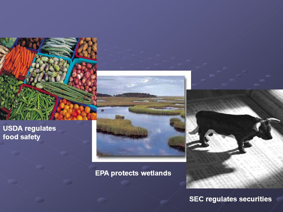USDA regulates food safety SEC regulates securities EPA protects wetlands