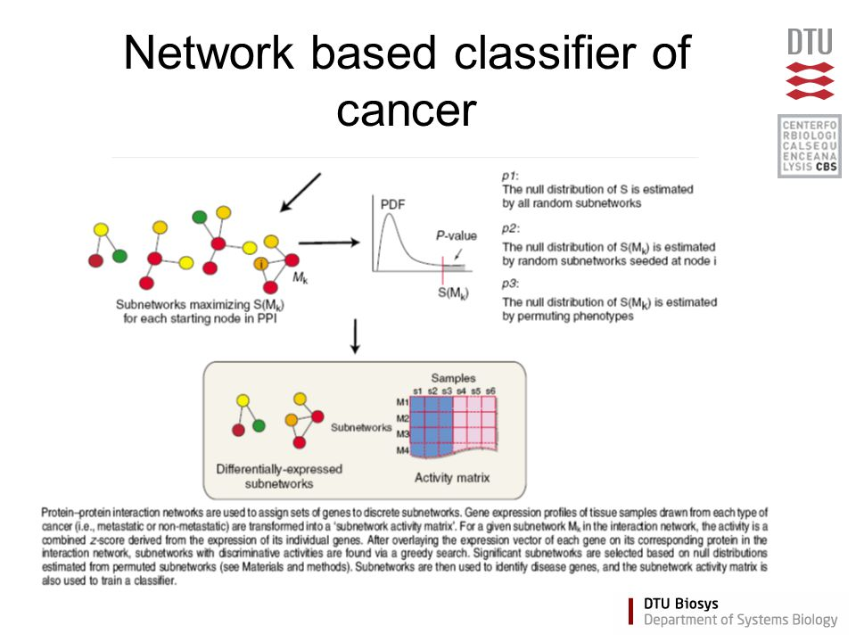 Network based classifier of cancer