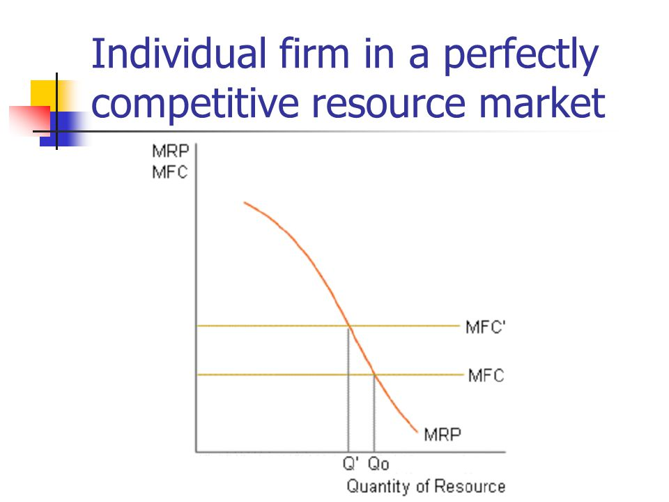 Individual firm in a perfectly competitive resource market