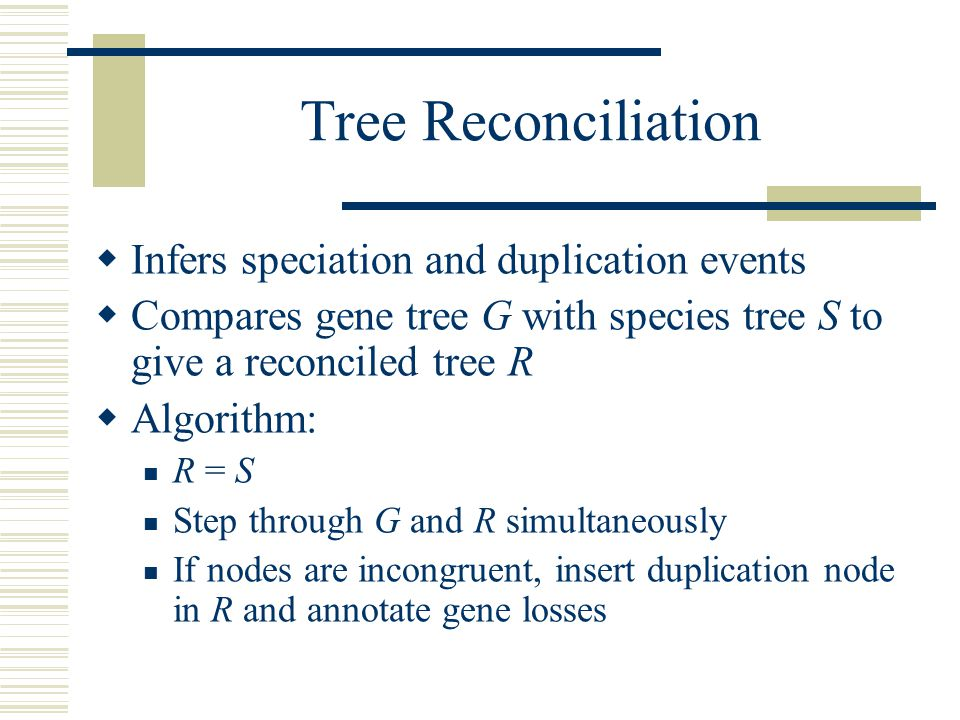 Tree Reconciliation  Infers speciation and duplication events  Compares gene tree G with species tree S to give a reconciled tree R  Algorithm: R = S Step through G and R simultaneously If nodes are incongruent, insert duplication node in R and annotate gene losses