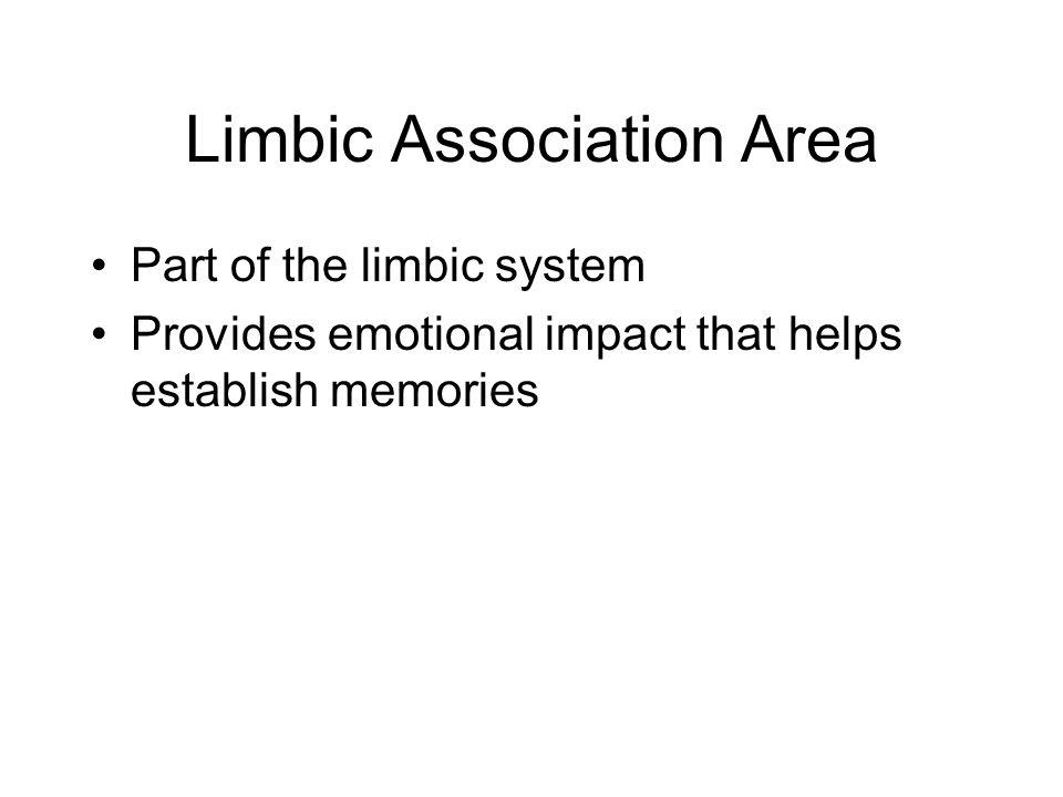 Limbic Association Area Part of the limbic system Provides emotional impact that helps establish memories
