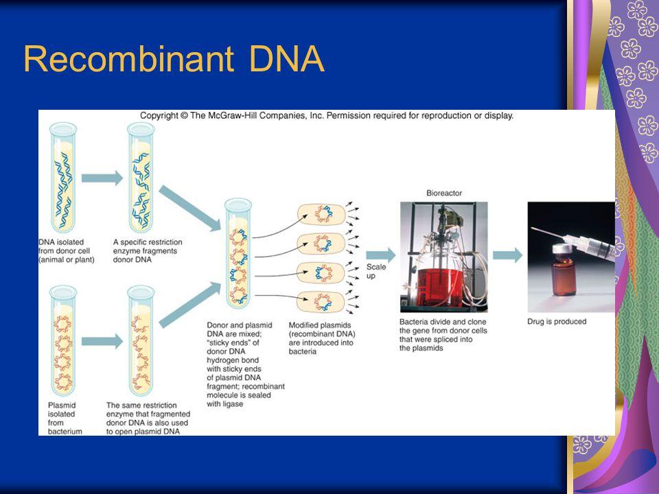 Recombinant DNA Figure 19.5