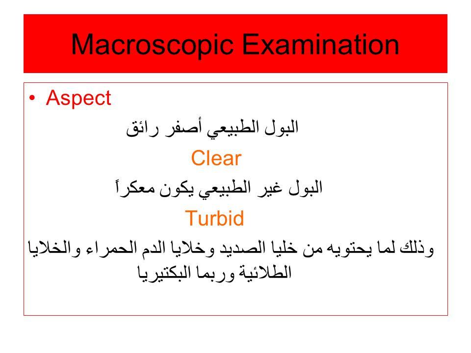 Macroscopic Examination Aspect البول الطبيعي أصفر رائق Clear البول غير الطبيعي يكون معكراً Turbid وذلك لما يحتويه من خليا الصديد وخلايا الدم الحمراء والخلايا الطلائية وربما البكتيريا