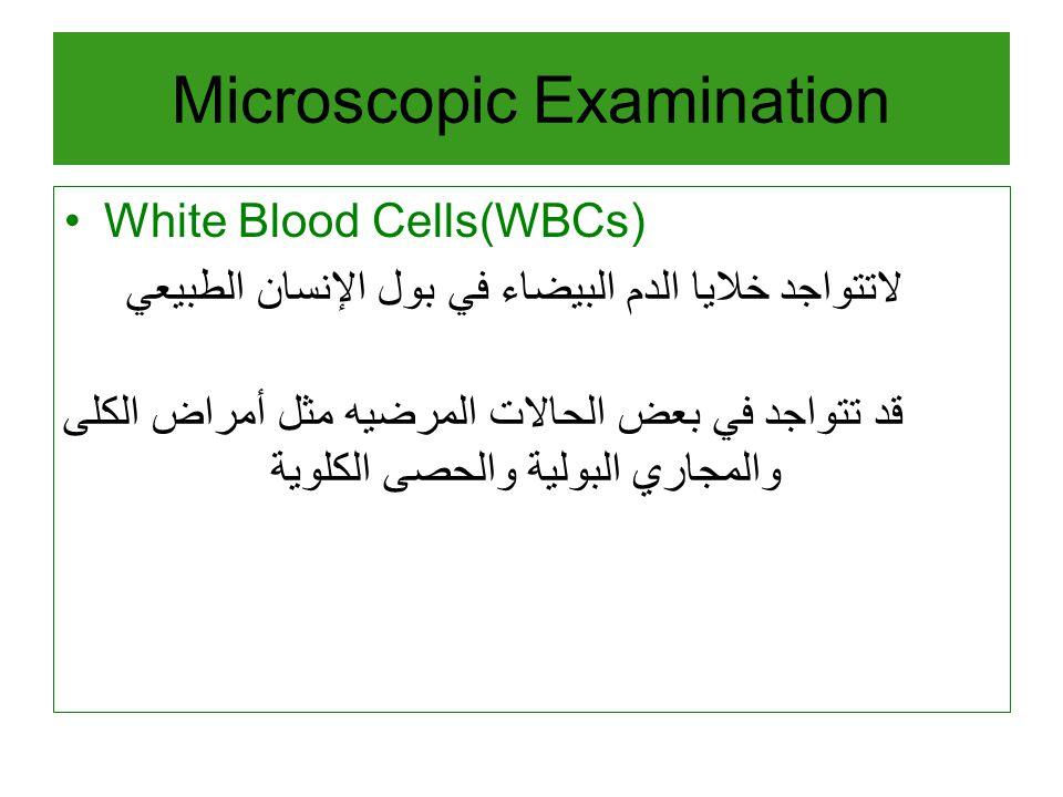 White Blood Cells(WBCs) لاتتواجد خلايا الدم البيضاء في بول الإنسان الطبيعي قد تتواجد في بعض الحالات المرضيه مثل أمراض الكلى والمجاري البولية والحصى الكلوية