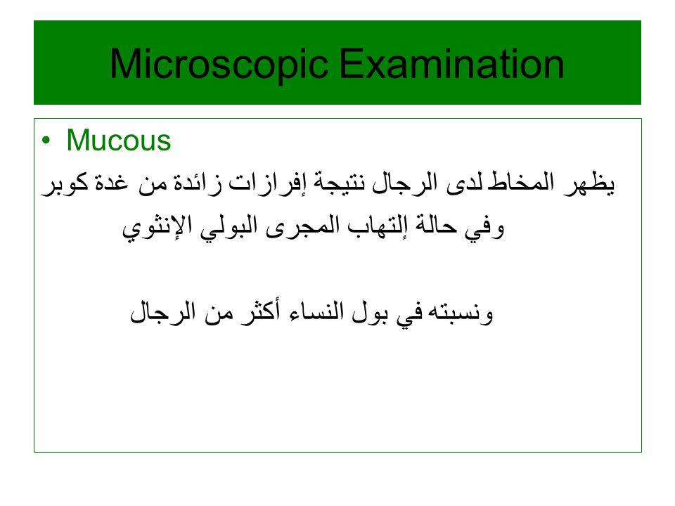 Microscopic Examination Mucous يظهر المخاط لدى الرجال نتيجة إفرازات زائدة من غدة كوبر وفي حالة إلتهاب المجرى البولي الإنثوي ونسبته في بول النساء أكثر من الرجال
