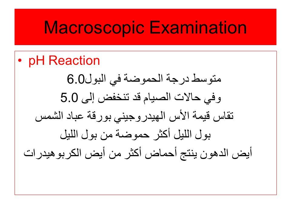 Macroscopic Examination pH Reaction متوسط درجة الحموضة في البول6.0 وفي حالات الصيام قد تنخفض إلى 5.0 تقاس قيمة الأس الهيدروجيني بورقة عباد الشمس بول الليل أكثر حموضة من بول الليل أيض الدهون ينتج أحماض أكثر من أيض الكربوهيدرات