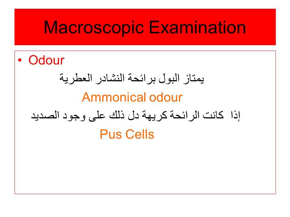 Macroscopic Examination Odour يمتاز البول برائحة النشادر العطرية Ammonical odour إذا كانت الرائحة كريهة دل ذلك على وجود الصديد Pus Cells
