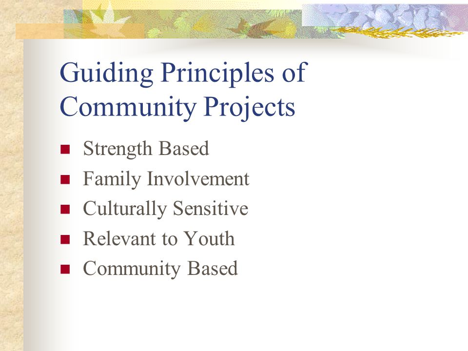 Guiding Principles of Community Projects Strength Based Family Involvement Culturally Sensitive Relevant to Youth Community Based