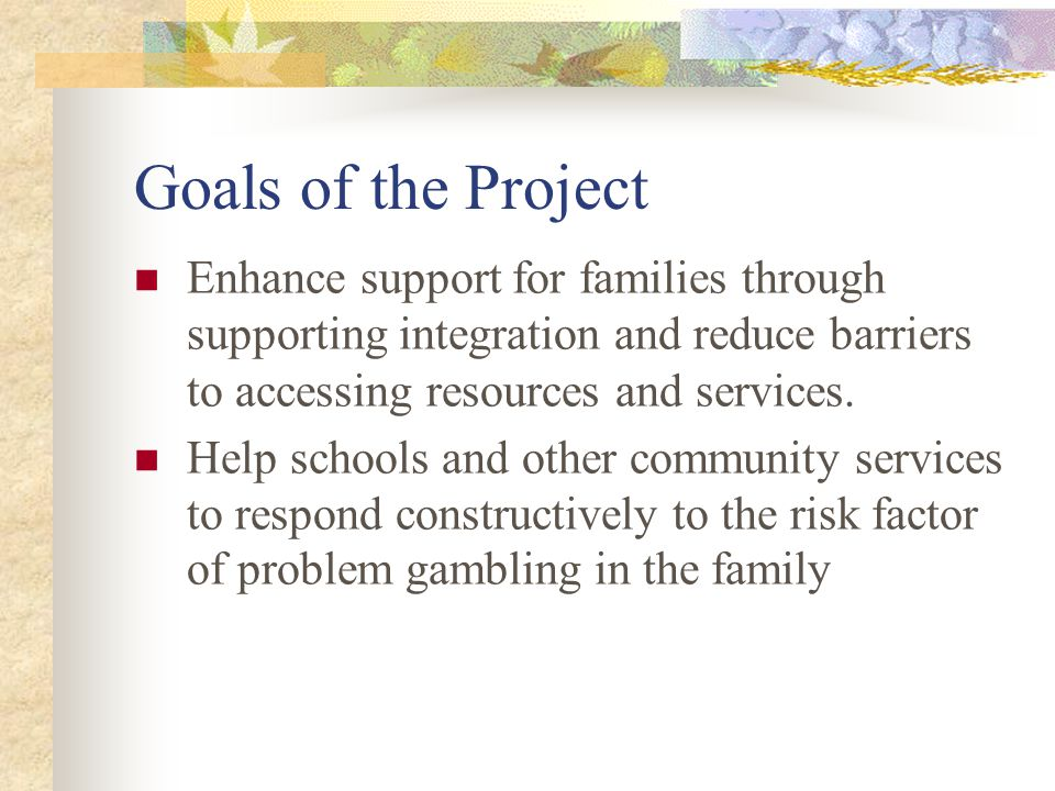 Goals of the Project Enhance support for families through supporting integration and reduce barriers to accessing resources and services.