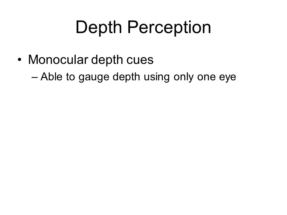 Monocular depth cues –Able to gauge depth using only one eye