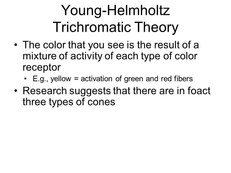 Young-Helmholtz Trichromatic Theory The color that you see is the result of a mixture of activity of each type of color receptor E.g., yellow = activation of green and red fibers Research suggests that there are in foact three types of cones