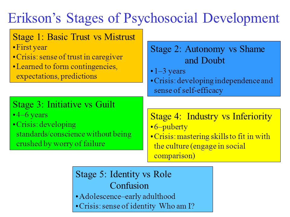 eriksons stages of development a 19 year Erik erikson's theory of the stages of human development the theory describes eight stages through which a healthily developing human should pass from infancy to late adulthood in each stage the person confronts, and hopefully masters, new challenges.