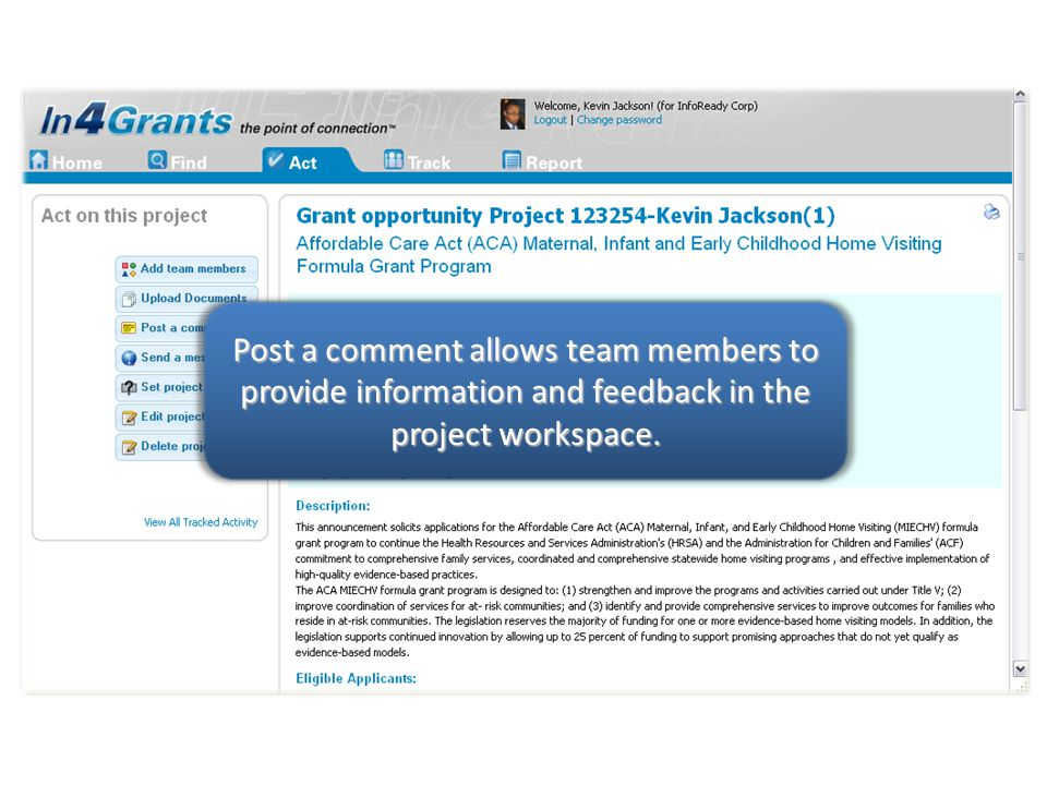 Post a comment allows team members to provide information and feedback in the project workspace.