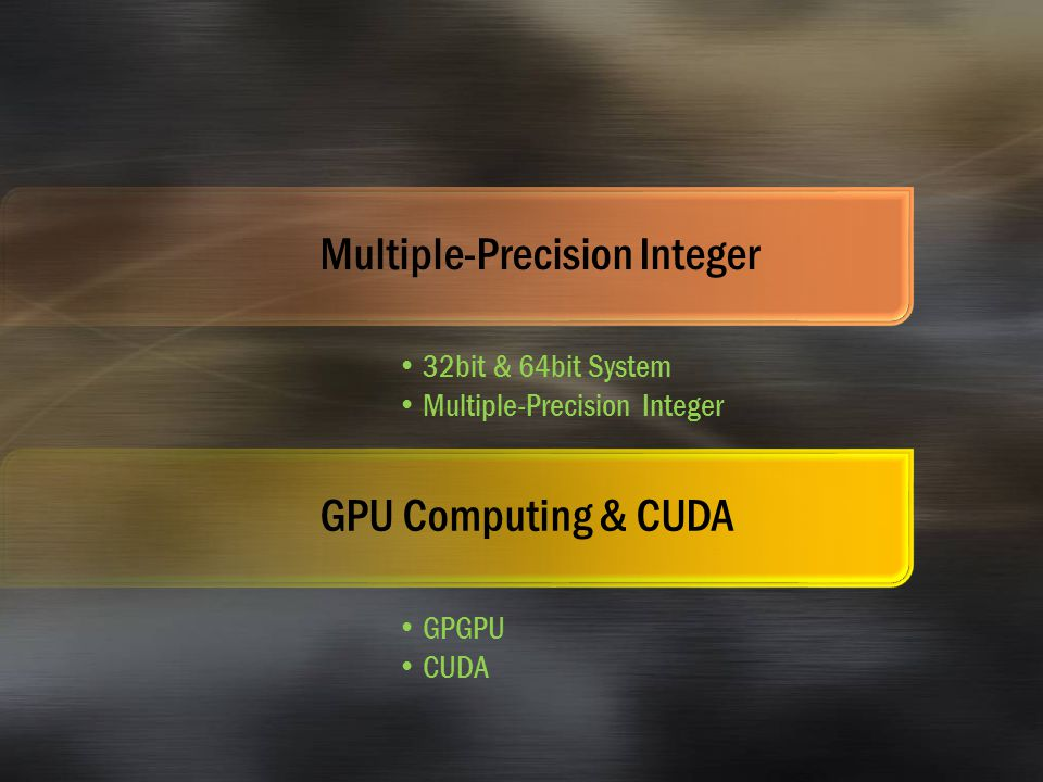 Multiple-Precision Integer 32bit & 64bit System Multiple-Precision Integer GPU Computing & CUDA GPGPU CUDA