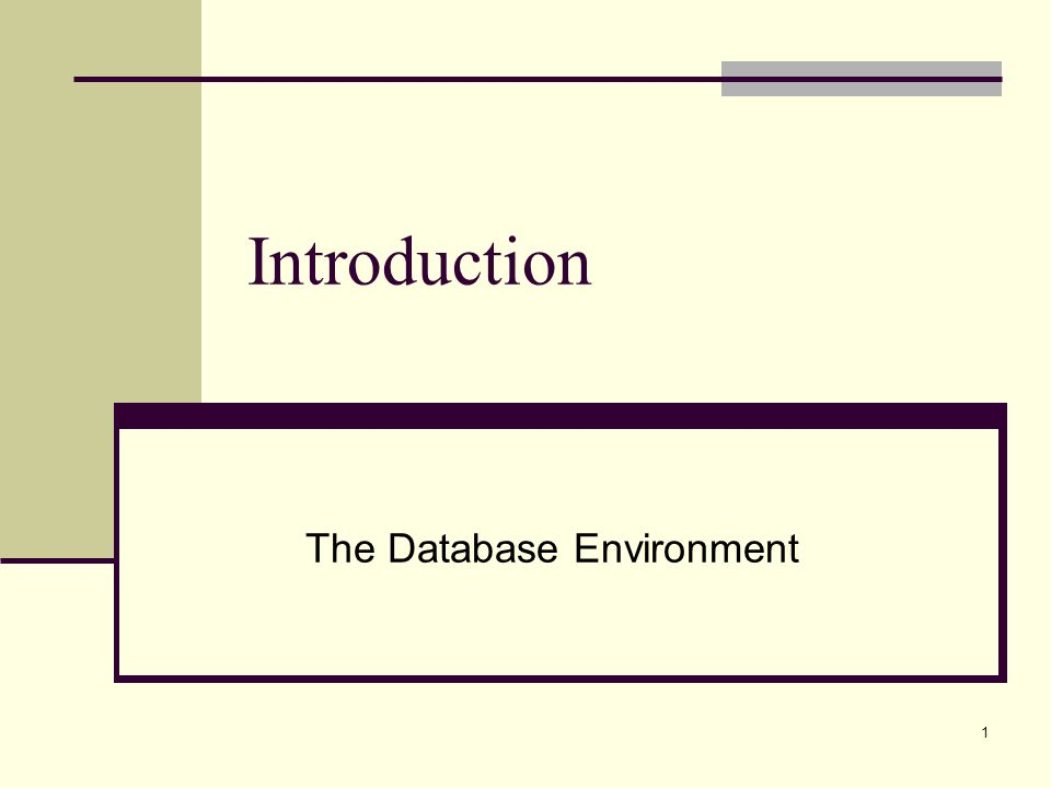 1 Introduction The Database Environment