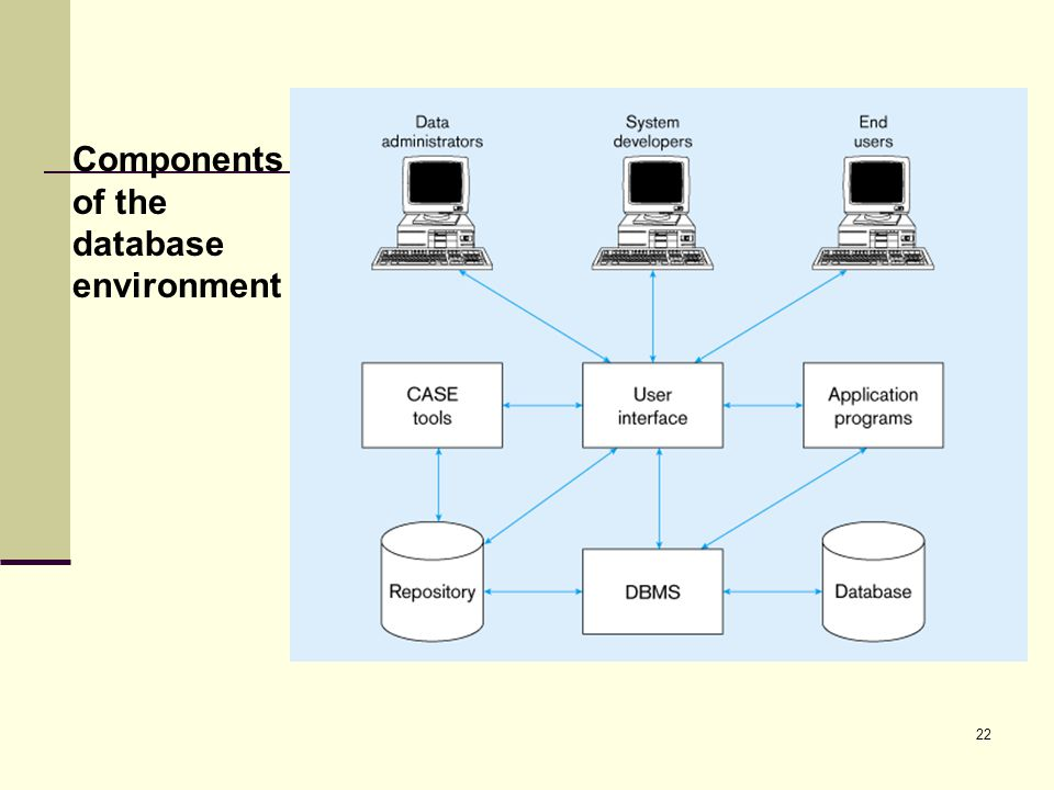 22 Components of the database environment