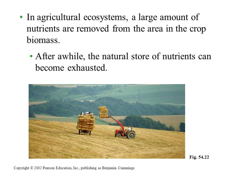  n agricultural ecosystems, a large amount of nutrients are removed from the area in the crop biomass.
