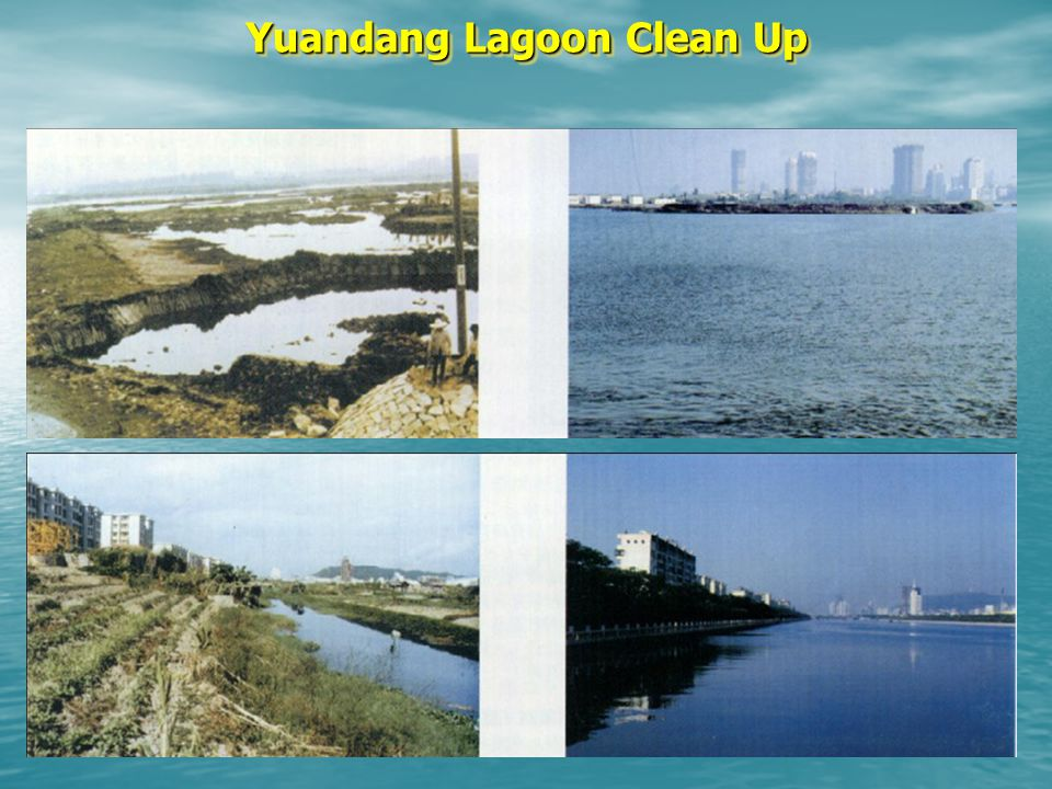 Yuandang Lagoon Clean Up