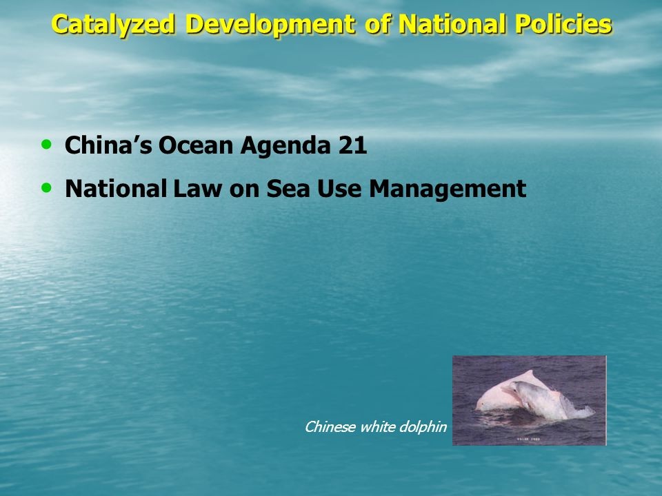 Chinese white dolphin Catalyzed Development of National Policies China's Ocean Agenda 21 National Law on Sea Use Management