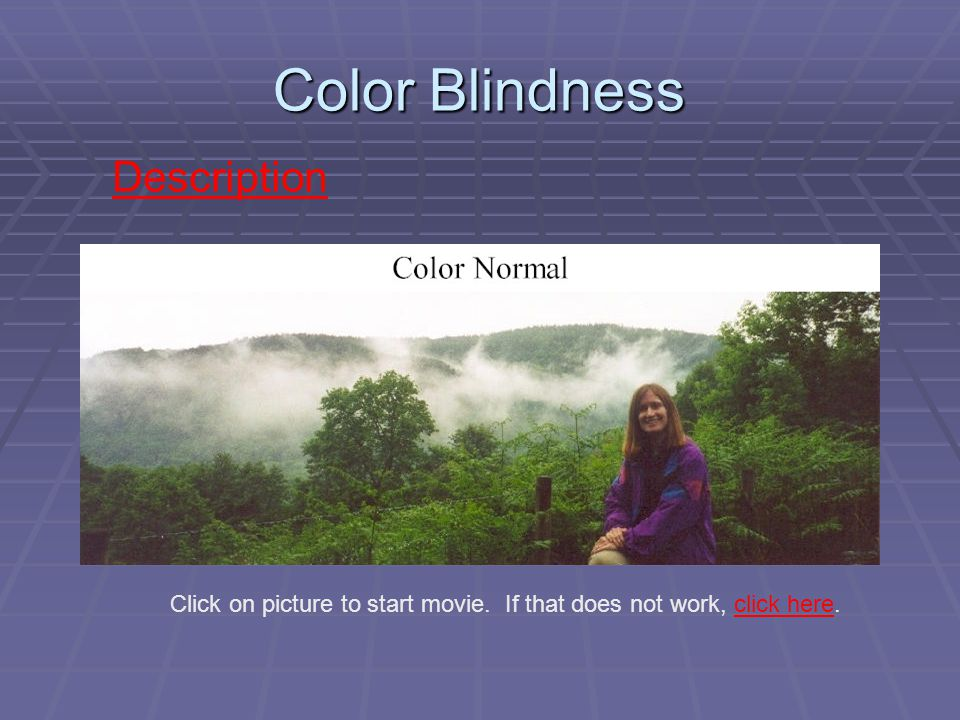 Color Blindness Description Click on picture to start movie.