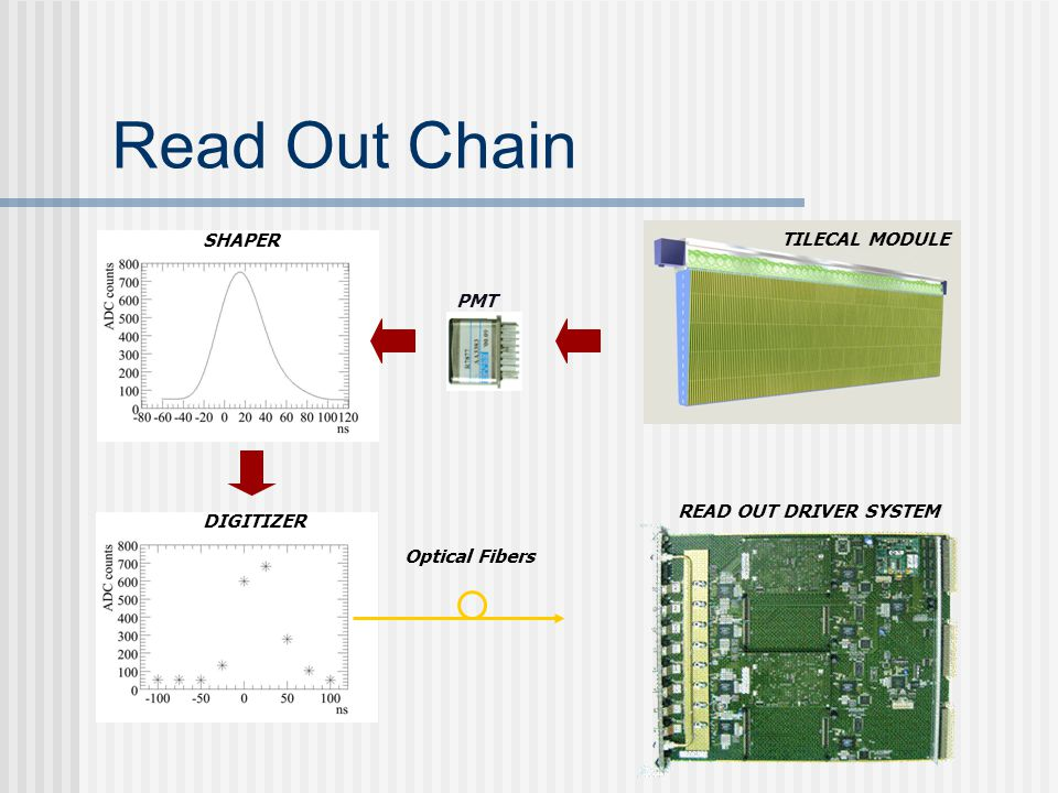 Read Out Chain PMT SHAPER DIGITIZER TILECAL MODULE READ OUT DRIVER SYSTEM Optical Fibers