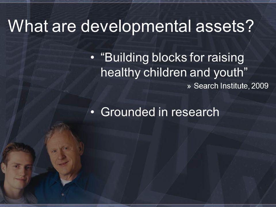 Why developmental assets.