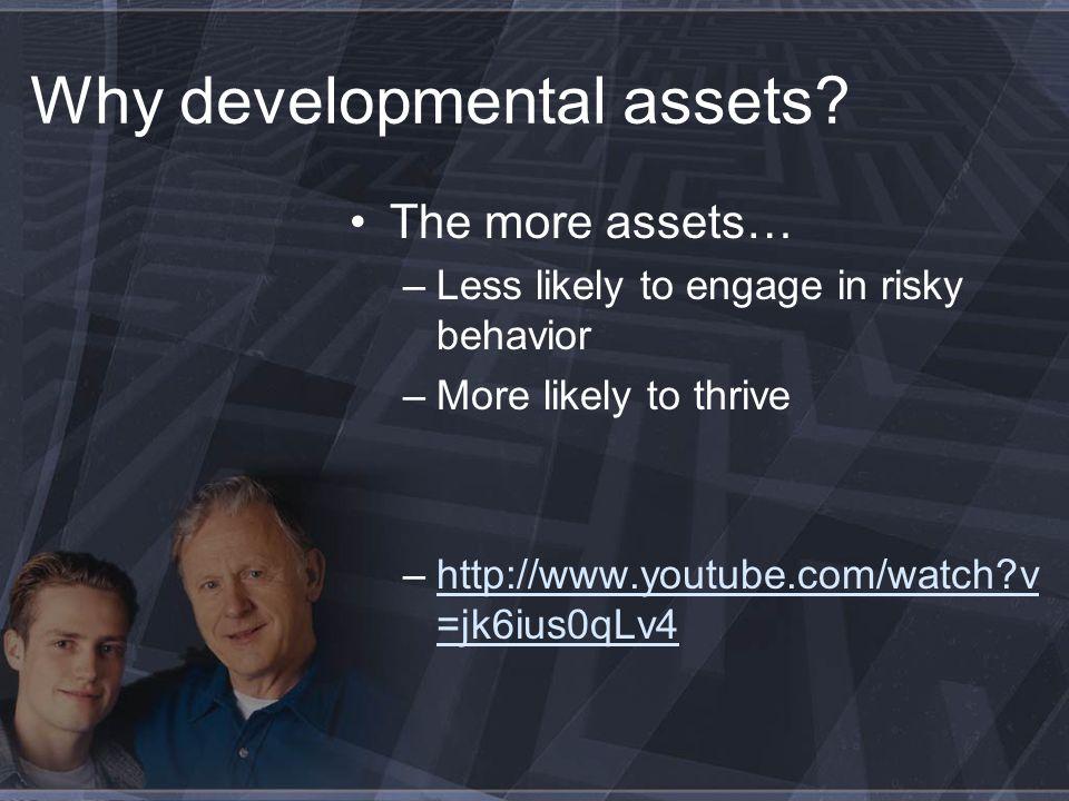 Assets & Risky Behavior www.search-institute.org