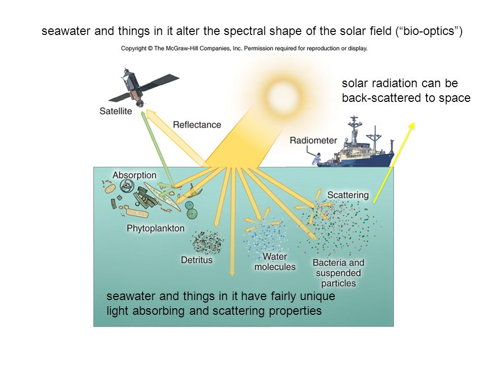 seawater and things in it alter the spectral shape of the solar field ( bio-optics ) seawater and things in it have fairly unique light absorbing and scattering properties solar radiation can be back-scattered to space