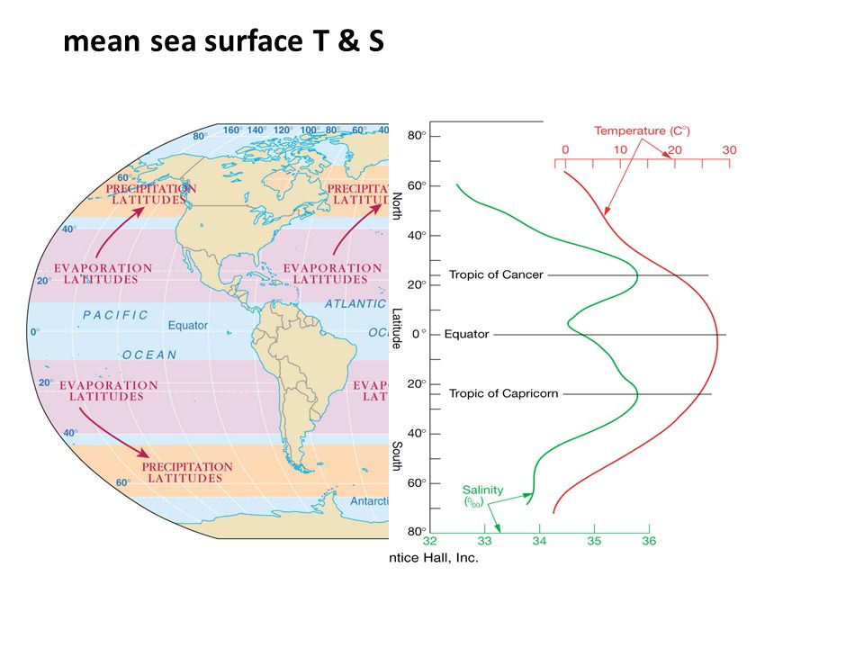 mean sea surface T & S