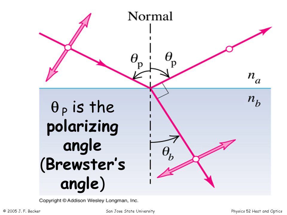   P is the polarizing angle (Brewster's angle) © 2005 J.