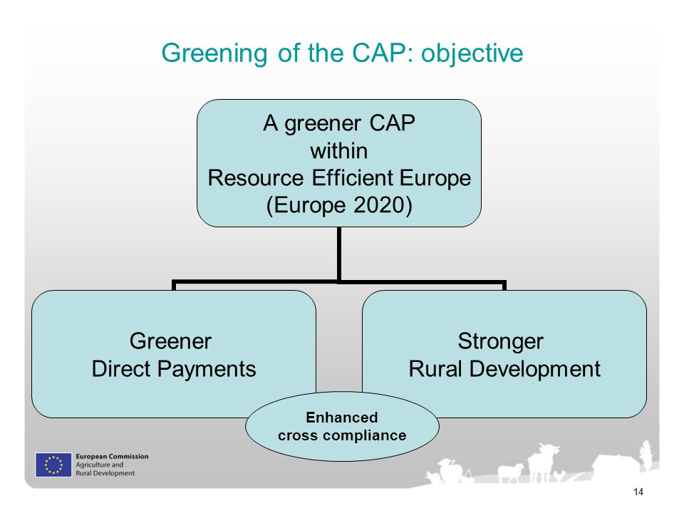 14 Greening of the CAP: objective A greener CAP within Resource Efficient Europe (Europe 2020) Greener Direct Payments Stronger Rural Development Enhanced cross compliance