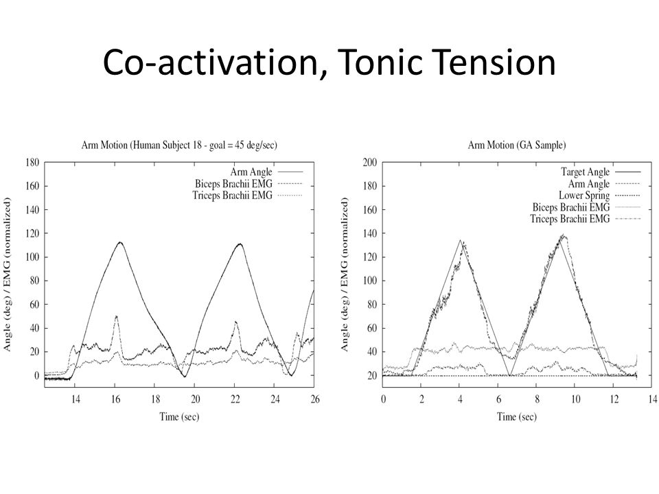 Co-activation, Tonic Tension