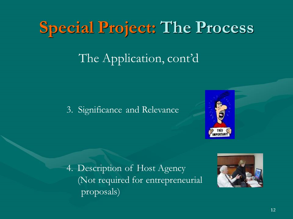 12 Special Project: The Process The Application, cont'd 3.