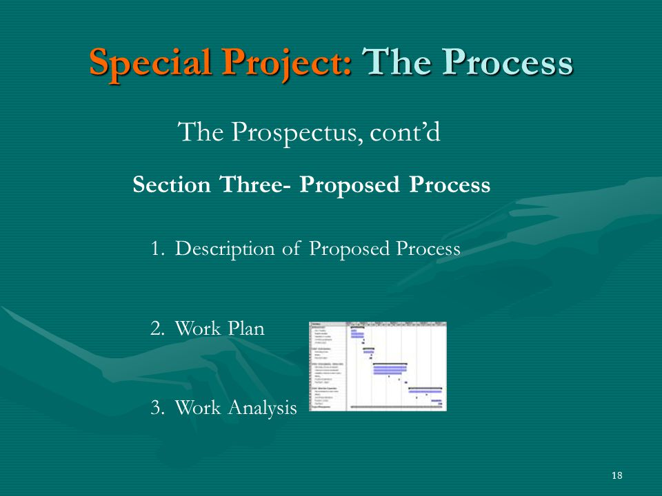 18 Special Project: The Process The Prospectus, cont'd Section Three- Proposed Process 1.Description of Proposed Process 2.Work Plan 3.Work Analysis