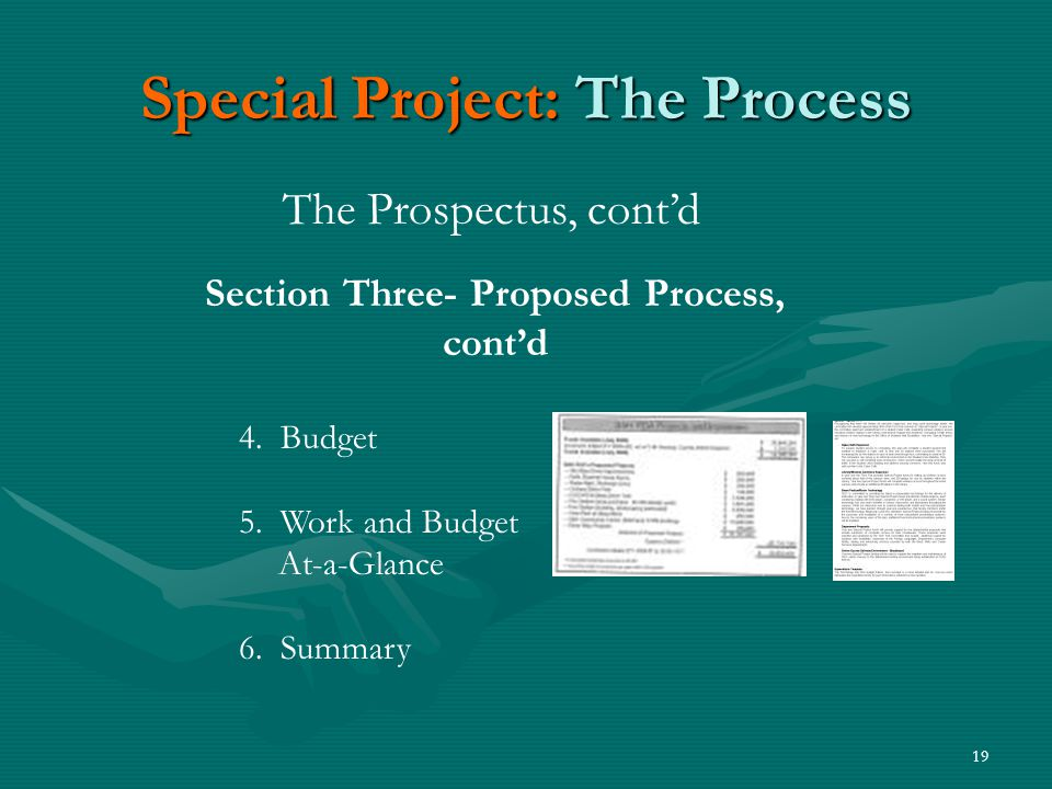 19 Special Project: The Process The Prospectus, cont'd Section Three- Proposed Process, cont'd 4.