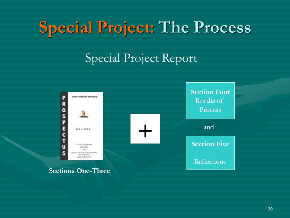20 Special Project: The Process Special Project Report Section Four Results of Process Section Five Reflections and Sections One-Three