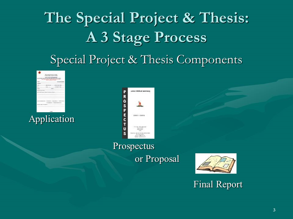 3 The Special Project & Thesis: A 3 Stage Process Special Project & Thesis Components Application Prospectus Prospectus or Proposal Final Report