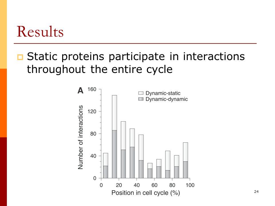 24 Results  Static proteins participate in interactions throughout the entire cycle