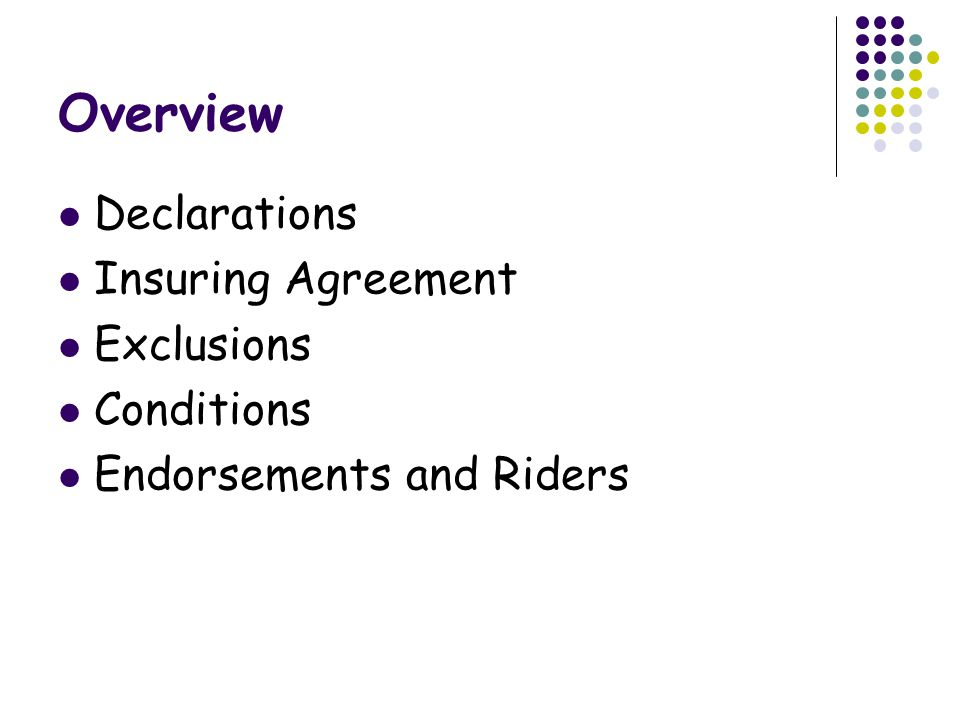 Overview Declarations Insuring Agreement Exclusions Conditions Endorsements and Riders