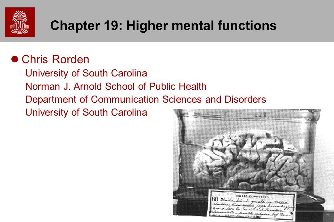 1 Chapter 19: Higher mental functions Chris Rorden University of ...